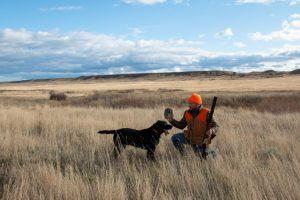 BBR Hunting 06