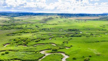 Teigen Ranch New Feature 1