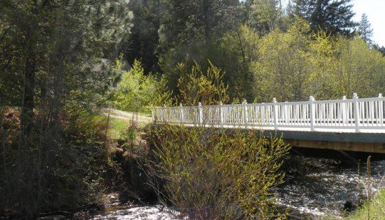 Bitterroot Valley Privacy - Skalkaho Creek