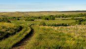 Teigen Ranch 05