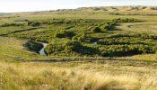 Teigen Ranch 16
