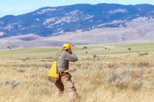 BBR Hunting 05
