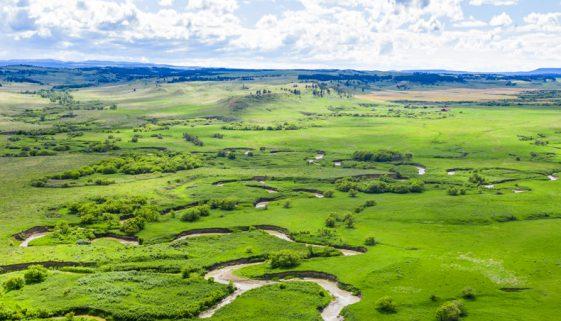 Teigen Ranch New Feature